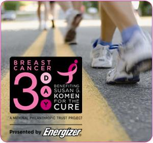 Donate To The 3 Day Breast Cancer Walk For The Cure (Click Picture)
