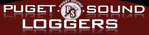 Puget Sound Women's Lacrosse banner