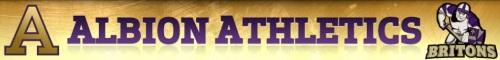 Albion Men's Lacrosse Banner