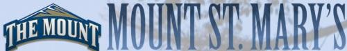Mount St. Mary's Women's Lacrosse Banner